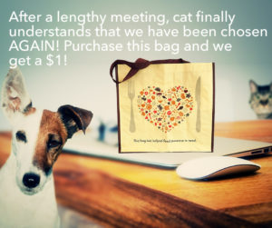 Dog and cat discussing Hannaford Helps reusable bag donation!